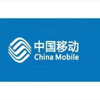 中国移动公司欧宝体育娱乐分公司